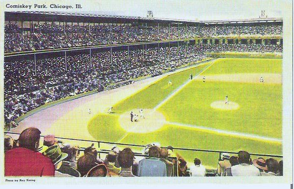 Chicago White Sox Baseball Stadium Old Comiskey Park Post Card