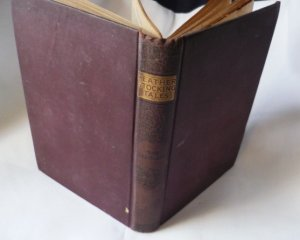 The Deerslayer by J Fenimore Cooper or the First War Path - 1800s Leatherstocking Book