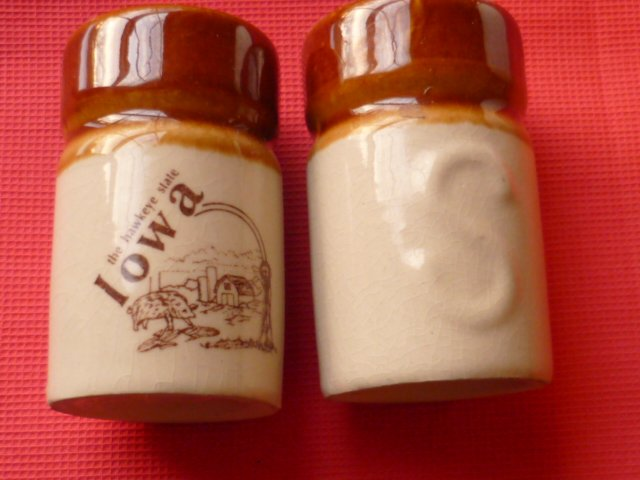 Iowa Souvenir Ceramic Salt and Pepper Shakers