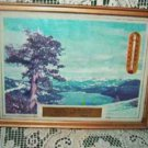Vintage Thermometer with Picturesque View of the Adirondacks w Local Advertisement