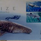 Belizean First Day Cover Whale Sharks 2004