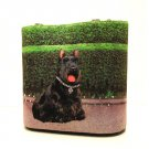 Dog Print Scottish Terrier Large Bucket