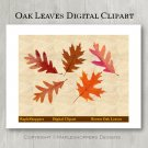 Oak Fall Leaves Clipart Digital Leaf PNG Realistic Fall Leaf Graphics Printables