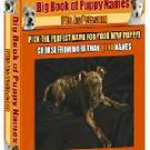 The Big Book of Puppy Names