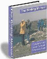 Birding For Everyone