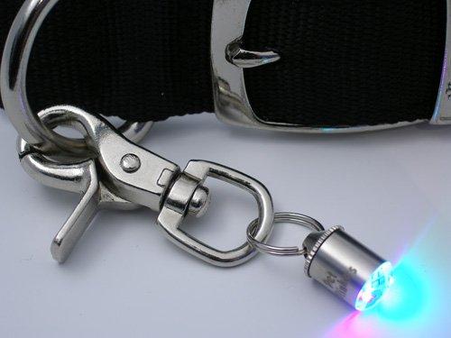 Pet Safety Light