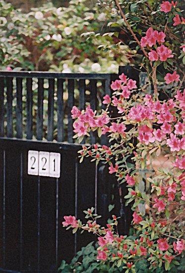 GATE 221