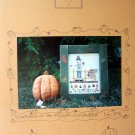 Fanci That Scarecrow of the month November cross stitch