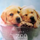 It's a Zoo Out There,Rachael Hale,Coffee Table,Large book,dog,cat,pictures