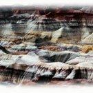 The Painted Desert Tour by TourAZ, Arizona