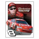 DALE EARNHARDT JR 2006 TIN SIGN METAL AD ADV SIGNS E