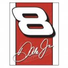 DALE EARNHARDT JR #8 TIN SIGN NASCAR COLLECTOR SIGNS E