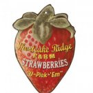 ANTIQUE STYLE STRAWBERRIES TIN SIGN FRUIT METAL SIGNS F