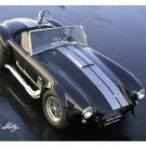 CAROLL SHELBY PHOTO PRINT HEAVY STEEL COBRA SIGN