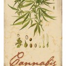 CANNABIS HEAVY METAL SIGN