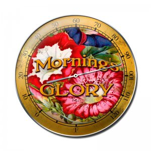 MORNING'S GLORY HEAVY ROUND THERMOMETER