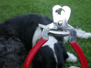 5 inches Stainless Steel Pet Nail Clippers with stopper