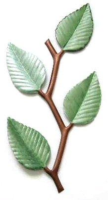 Banding Vine Leaf