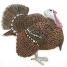 Turkey Tom | Refrigerator Magnet | Handpainted Magnets | Bird Magnets