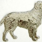 Dog Retriever | Refrigerator Magnet | Handpainted Magnets | Animal Magnets