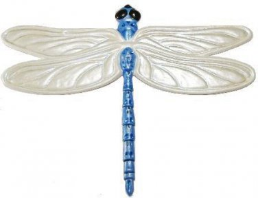 Dragonfly | Refrigerator Magnet | Handpainted Magnets | Insect Magnets