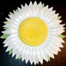 Daisy  Refrigerator Magnet   Handpainted Magnets   Fruit Magnets