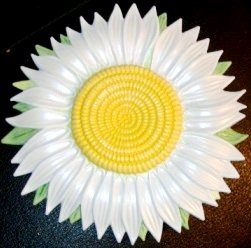 Daisy| Refrigerator Magnet | Handpainted Magnets | Fruit Magnets
