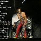 Aerosmith 1994 Live DVD