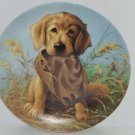 Golden Retriever Collector Plate Caught Act Vintage 1987 United Kennel Club