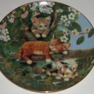 Cat Kitty Collector Plate Out Limb Tree Frisky Felines Jurgen Scholz Bradford
