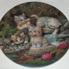 Cat Kitty Collector Lilly Pond Gold Fish Scholz Bradford Kitty Expedition German