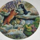 Cat Kitty Collector Climbing Rock Garden Scholz Bradford Kitty Expedition German