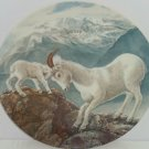 Mountain Goats Baby Collector Plate Gentle Persuasion Wildlife Hicks Knowles Vtg