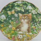 Kitten Collector Plate Flowers Butterflies Cat Paws in Play Bradford Exchange