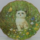 Kitten Collector Plate Flowers Butterflies Cat A-Mew-sing Encounter Bradford Exc