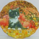 Cat Pumpkins Kitty Collector Plate Halloween Tiny Treasures Bradford Exchange