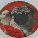 Poppy Love Pugs Pug Dog Collector Plate Danbury Mint Retired Limited Edition