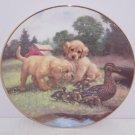 Dogs Ducks Farmyard Collector Plate Follow the Leader Hamilton Animals Retired