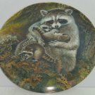 Racoon Baby Collector Plate Protective Embrace Wildlife Hicks Knowles Vintage