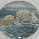 Polar Bears Baby Collector Plate Tender Coaxing Wildlife Hicks Knowles Vintage