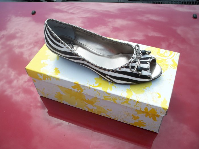 """Detroit"" Zebra Print Flat from Yellow Box - Size 6.5"
