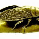Cicada for Protection and Immortality