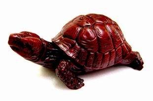 Tortoise of Happiness