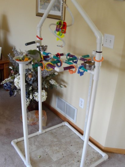 Parrot Adventure Station (SMALL)