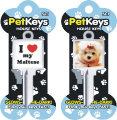 Klinky Maltese pet dog key blank 816