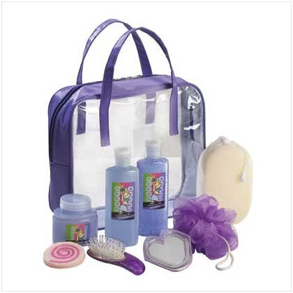 #36387 Wild Berry Set In Purple Tote