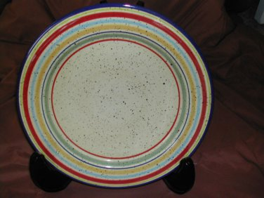 "Pfaltzgraff Sedona Hand-Painted 12"" Dinner Plate Excellent Condition"