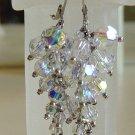 Crystal Caterpillar Earrings
