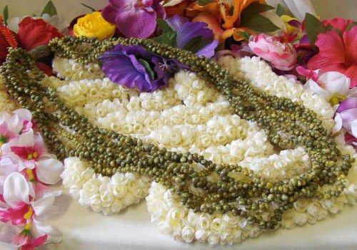Hawaiian hula lei necklace green shell NEW