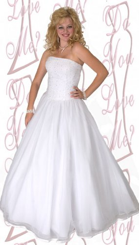 Ball Gown -PLUS Size (DYLM 1807)